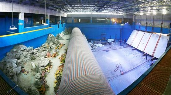巴南:海洋公园5月1日将开园 上万海洋生物等你来