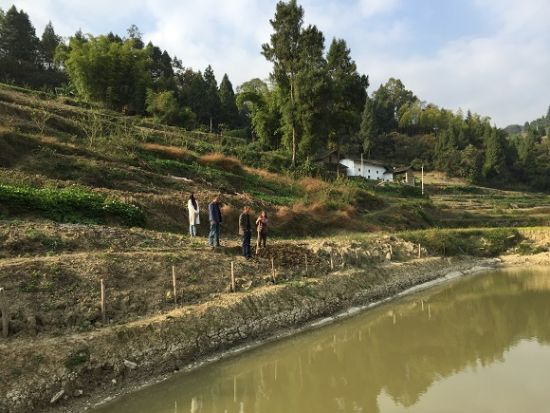 验收组工作人员在现场查看贫困户新建鱼塘项目建设情况。通讯员 张凯伦 摄
