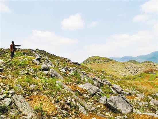 酉阳石漠化治理前光秃秃的石头山。(市林业局供图)