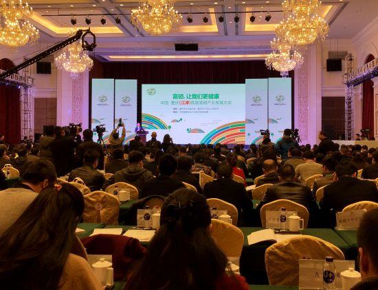 图为中国•重庆(江津)首届富硒产业发展大会现场。周毅摄