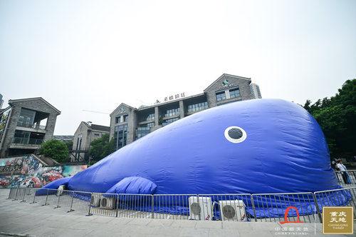 图为32米蓝鲸。 重庆天地供图