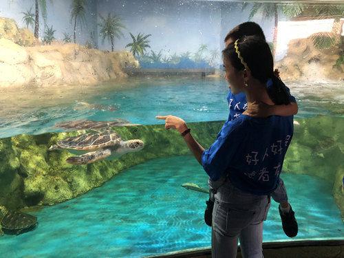 图为参与活动的家庭正在观赏鱼类。 巴南宣传部供图