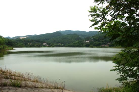 圖為清漂后的攔河堰水庫一景。 重慶銅梁區委宣傳部新聞辦公室供圖