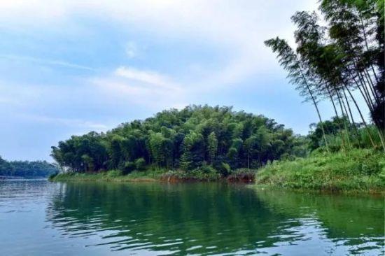 图为蜀南竹海风景 蜀南竹海景区供图