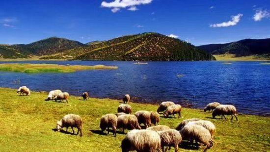 图为香格里拉景色。云南省迪庆藏族自治区供图。