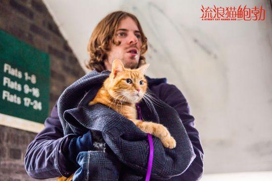 电影《流浪猫鲍勃》剧照 片方供图