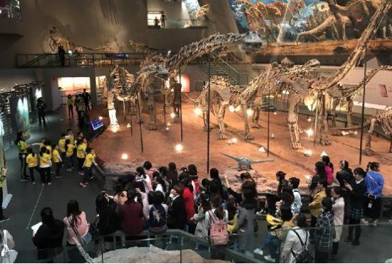 图为《恐龙有多长》教学活动现场 主办方供图