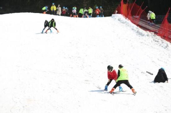 图为开放的滑雪场。 奥陶纪供图
