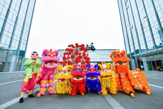 图为香港姜氏醒狮团的醒狮。主办方供图