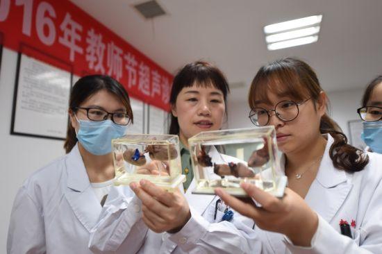 资料图为新桥医院超声科夏红梅教授正在介绍心脏模型。(通讯员 曾理摄)