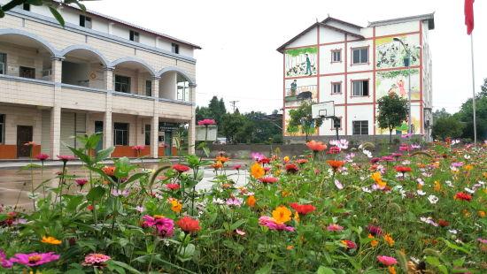 图为维新镇双石村农民新村培植的花草