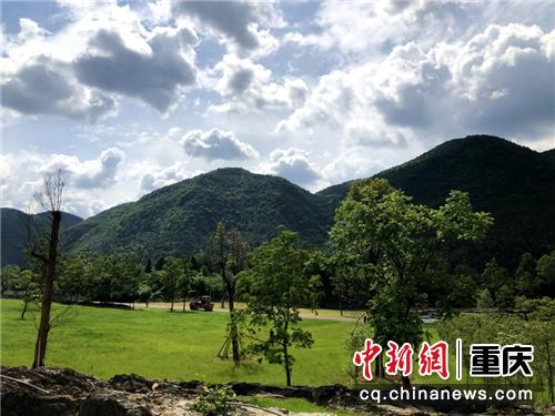 酉阳叠石花谷实拍图 景区