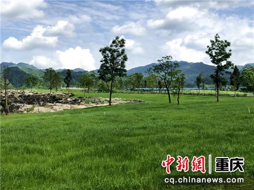 酉阳叠石花谷实拍图 景区供图