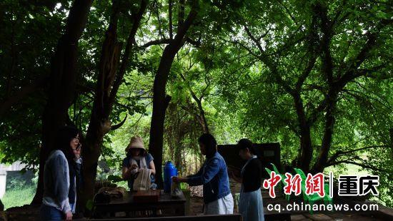 5月22日,几位游客正在寸滩老街至善桥上喝茶。