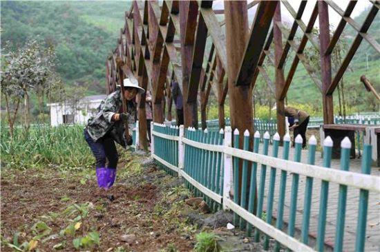 村民正在乡村旅游点田间劳作。 赵勇 摄影