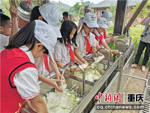 图为当地小学生在参加研学活动 胡腾 摄