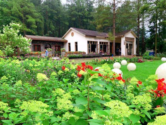 涪陵大木花园节28日启幕打开花样生活。景区供图 华龙网发