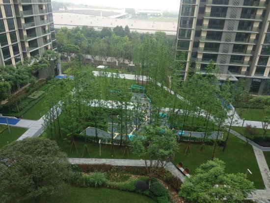 龙湖昱湖壹号小区庭院实景图。 马佳欣摄