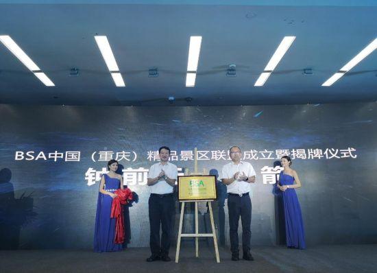 图为联盟揭牌成立现场。摄影 刘贤