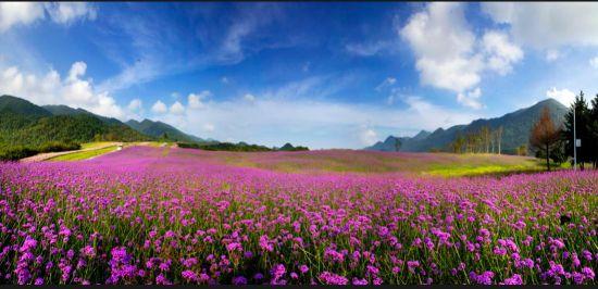 图为巫溪红池坝景区。巫溪县委宣传部供图