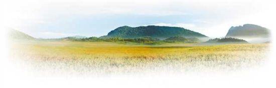 国家森林公园、国家级自然保护区雪宝山