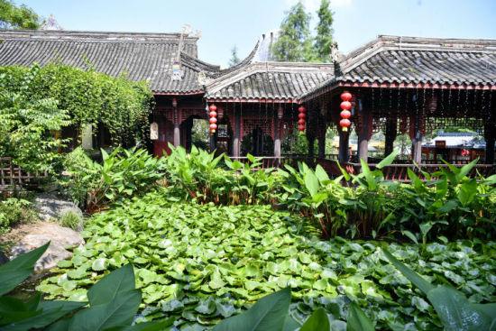 重庆璧山秀湖国家湿地公园的一家茶社。刘潺 摄