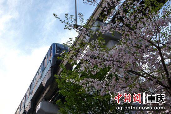 金渝站开出春天的列车