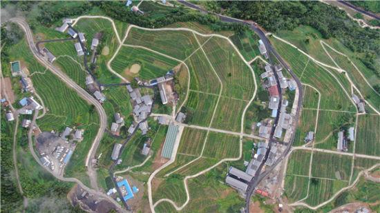 航拍下的茶山村看起来格外美。通讯员 乔洛阳 摄