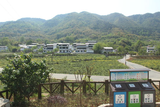 蒲呂街道康濟村新農村一景。趙武強 攝