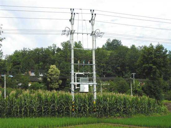 升级改造后的电网。垫江县委宣传部供图