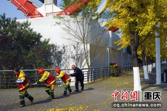 冬日的阳光如金色的裙摆,明晃晃的照耀在市政工人们的身上,每一片叶子上,为工人们前行劳作铺上金色的地毯,照耀前行的道路。