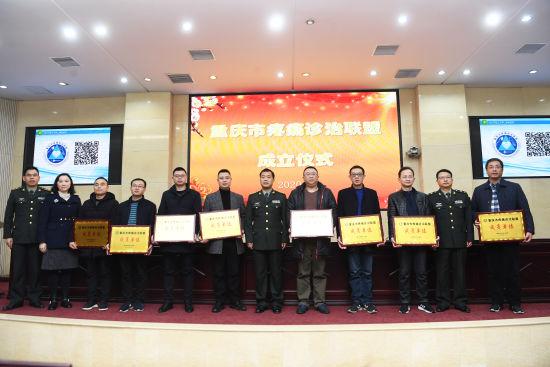 新桥病院牵头成立重庆市首个痛楚悲伤诊治同盟