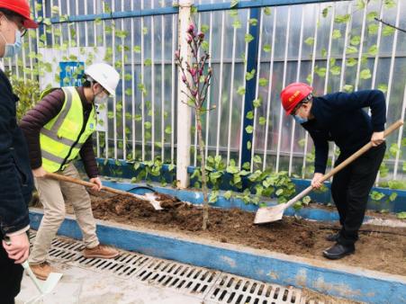 """中建五局重庆分公司开展""""抗击疫情 播种希望""""主题植树节活动。活动方供图"""