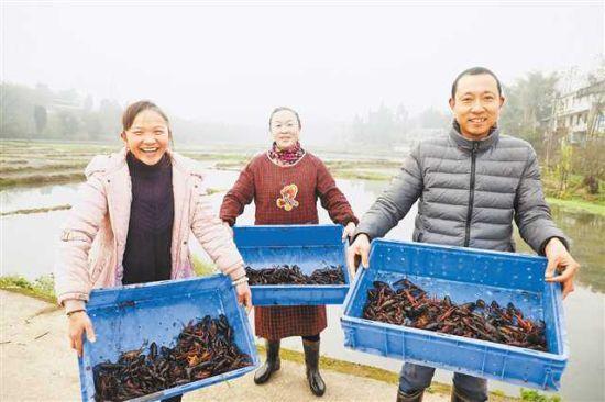 农户忙着打捞小龙虾。(潼南区委宣传部供图)