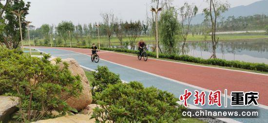 市民在西郊绿道上骑行、散步。 赵武强 摄