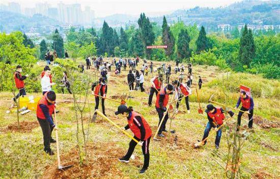 今年以来,我市各区县抢时间、赶进度,加快推进植树造林工作。图为大足区五星社区干部群众在义务植树(摄于4月16日)。特约摄影 瞿波
