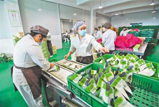 图为5月22日,九龙坡区怡园食品有限公司,居民经社区就业超市牵线,在此从事食品包装封袋工作。记者 郑宇 摄