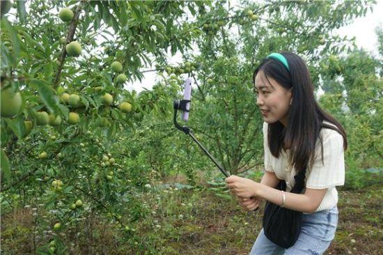 《【恒耀总代理】大足:网络电商扶贫网络达人义务推销农产品》