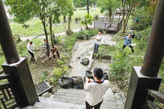 6月29日,黔江区濯水古镇旅游公司员工扶正被洪水冲倒的风景树。