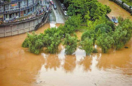 7月15日,荣昌区濑溪河超保证水位。记者 龙帆 摄/视觉重庆