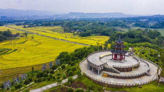 《【恒耀平台主管】庆丰收迎小康 梁平将隆重庆祝中国农民丰收节》