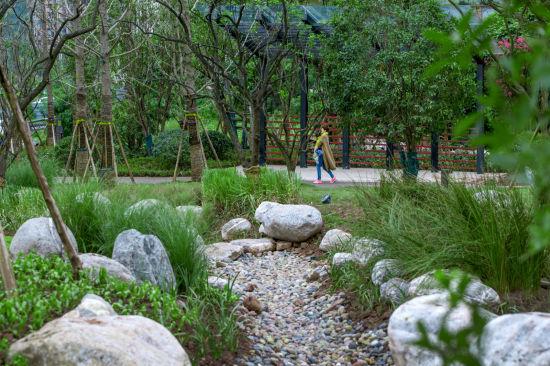 图为南岸弹子石体育公园。重庆市规划和自然资源局供图。