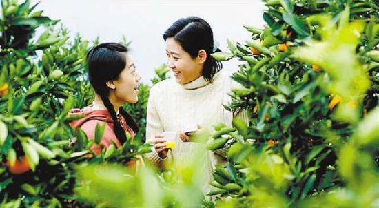 重庆本土电影《橙妹儿的时代》亮相