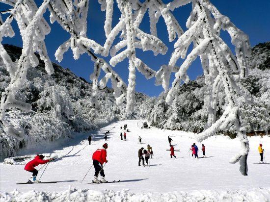 《【恒耀平台主管待遇】重庆金佛山将免费派发10万张门票邀市民玩雪》