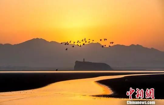 夕阳余晖下,呈现出一幅美丽的冬日画卷。 傅建斌 摄