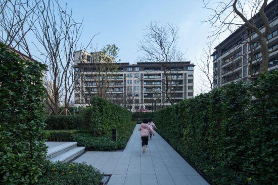 """重庆万科金开悦府风悦社区用绿植打造的""""九宫格""""迷宫。"""