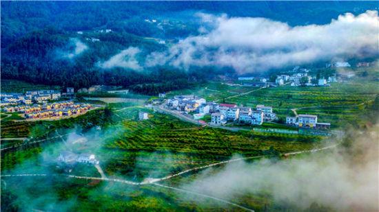 """巫溪红池坝镇:""""美丽经济""""赋能"""