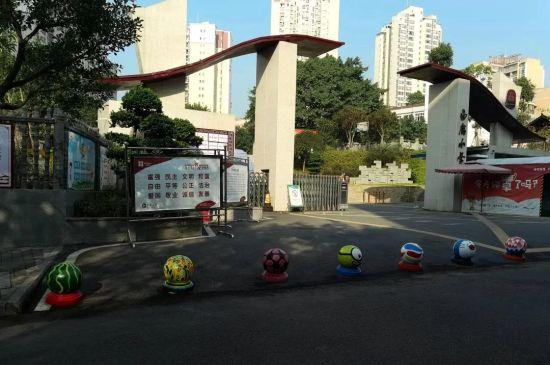 《【恒耀主管】防撞球和鹅卵石上作画 小学生描绘多彩校园》