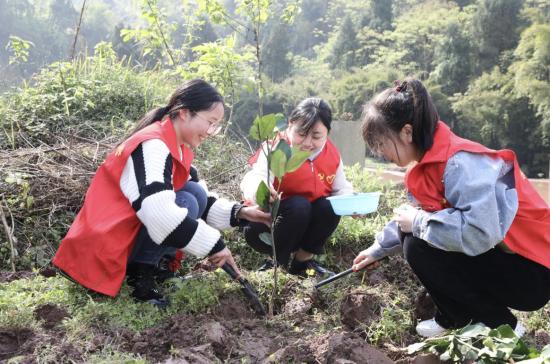 """图为志愿者""""林小青""""正在松土、种树、浇水。"""