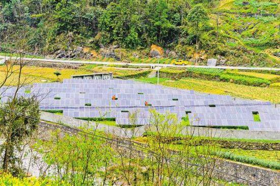 4月13日,巫溪县红池坝镇渔沙村村级光伏扶贫电站内,一排排蓝色光伏发电板正在发电。(国网重庆巫溪供电公司供图)